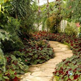 montascale in giardino per disabili a Como