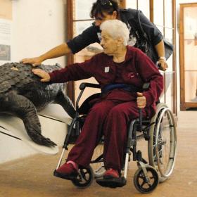 Montascale al Museo di Storia Naturale di Calci (Pisa) per disabili