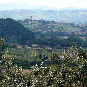 Montascale a Torgiano in condominio. Foto credit: Di Zyance