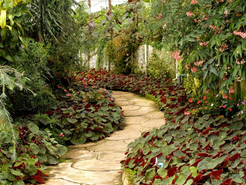 come-arredare-giardino-per-anziano-percorsi