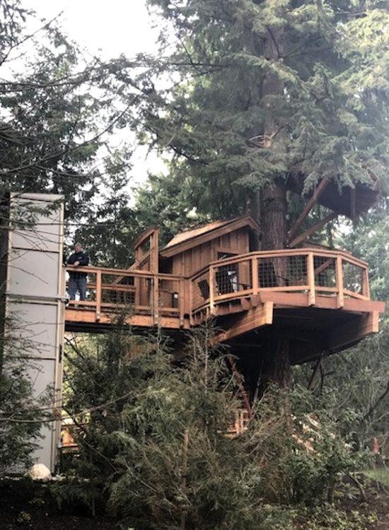 casa sull'albero accessibile ai disabili